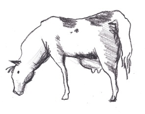 sketch for milkhorse logo