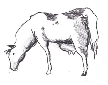 Milkhorse logo sketch