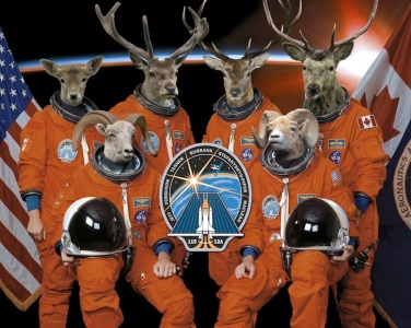 Crew of the Artemis