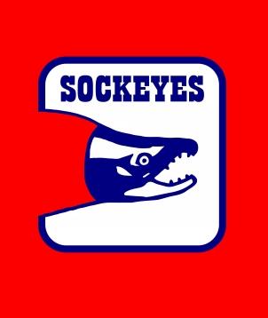Ball hockey team logo